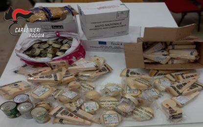 Apricena, rubati generi alimentari dai locali della Caritas: arrestato giovane evaso dai domiciliari