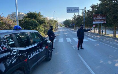 Gargano, intensificati i controlli dei Carabinieri su tutto il territorio